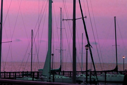 Masts in purple sky