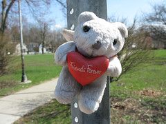 a memorial to a fallen pedestrian in Ithaca (by: Ari Moore, creative commons license)