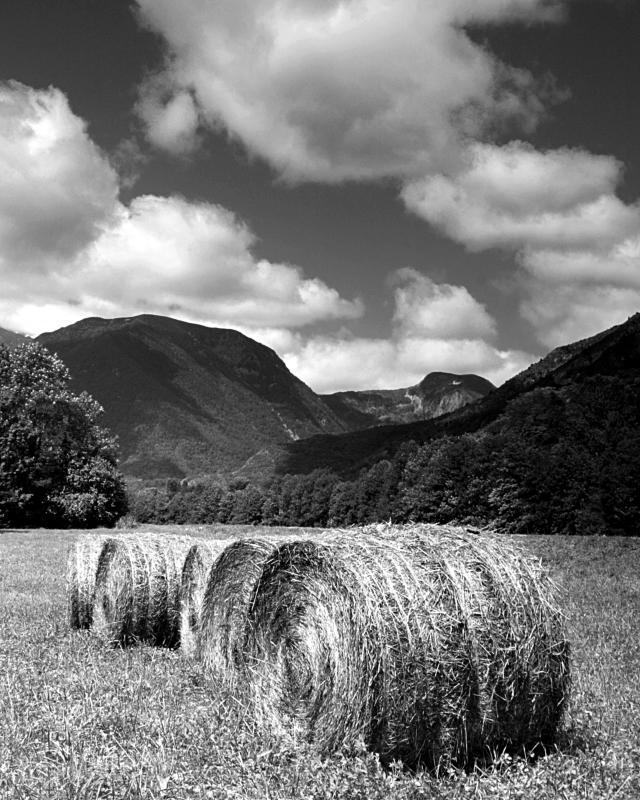 Bales in the Pyrenees