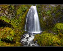 Wahkeena Falls 2 - HDR (David Gn Photography) Tags: oregon portland waterfall pacificnorthwest pdx columbiagorge hdr wahkeenafalls photomatix sigma1020mmf35exdchsm canoneosrebelt1i