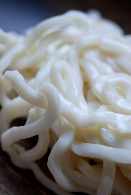 Udon Noodles© by Haalo