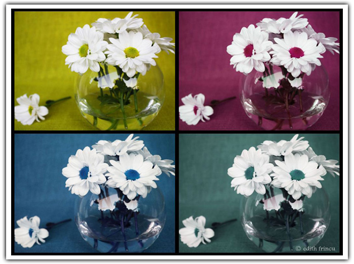 flower bowl collage