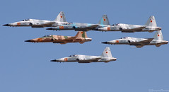 F-5 Formation (EverydayTuesday) Tags: military tiger nevada jet naval usnavy f5 avation adversary northrop formationflying figther agressor canon70300is nasfallon canonef70300mmf456isusm vfc13 fallonnas canon40d fallonairshow