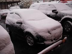 It snowed last night.