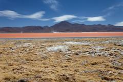 baudchon-baluchon-laguna-colorada-0418