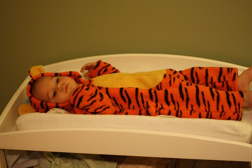 10-25-09-tiger