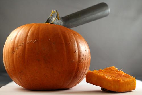 pumpkin-scoop