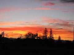 Clovis CA  this early morning (Laila Neihoum) Tags: ca blue sky orange me pine sunrise canon purple streetlights earlymorning clovis goodday miracleofnatur
