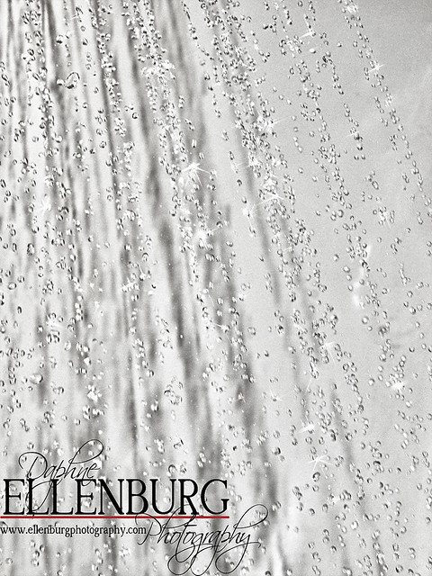21/52 FAST Shower