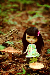 Among the Mushrooms - 6/365 A Doll A Day