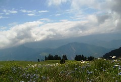Mersivan Yaylas-Artvin/Trkiye/Turkey (Sertac08) Tags: travel blue green turkey kayak trkiye artvin piknik bulut gkyz gezi iek yeil bcek yayla orman doal doa merkezi deer mthi gkmavi atabar gezilip mersivan grlmeye
