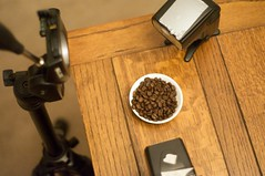Coffee Beans Macro Set Up (stephenkirsch) Tags: macro coffee up set lens 50mm beans nikon close adapter reverse f18 cls sb800 d90 strobist sb900