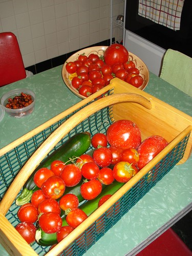 Tomatoes (and zucchini)