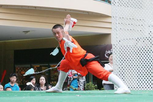 Wushu 03