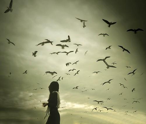 birdsandgirl