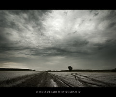 Drama in the sky (Luca Cesari Photography) Tags: bw italy field clouds canon landscape italia noir nuvole path campo nuages bianco blanc nero efs1022mm 400d lucaeos