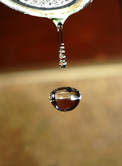 Water Drop for a Rainy Day (Daniel Y. Go) Tags: macro lumix action philippines panasonic waterdrops h20 lx3 lumixlx3 gettyimagesphilippinesq1