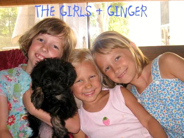 the girls & ginger1