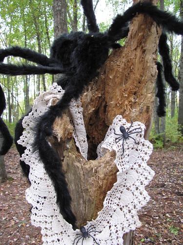 Halloween bash spider mum