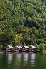 Boathouses of Flm (Rozanne Hakala) Tags: houses mountains water norway reflections norge explore fjord scandinavia flm flam sognefjord boathouses aurlandsfjord theperfectphotographer sognefjordinanutshell worldslongestanddeepestfjord littleplacebetweensteepmountains