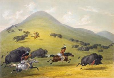 buffalo hunt 5
