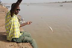 4b.Fishing, Senegal River, Matam