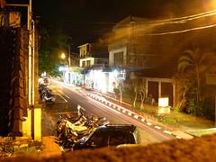 Monkey Village Road, 66/365