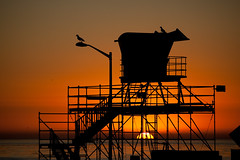Lifeguard station at sunset (ssilberman) Tags: sunset seagulls beach station silhouette photography la losangeles tour gulls lifeguard personalized lifeguardstation charterbus adayinla photographictour adayinlatours adaynla rastabuscom httpwwwadayinlatourscom