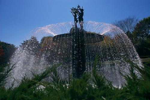 噴水 / fountain