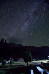 (jonmartin ()) Tags: longexposure pakistan mountain mountains tree night stars landscape outdoors tripod milkyway nangaparbat diamir gilgitbaltistan
