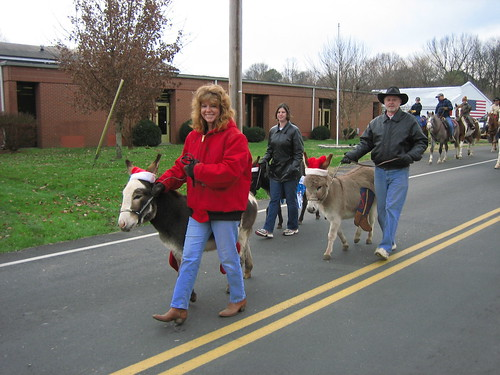 Christmas Parade Miniature Donkey