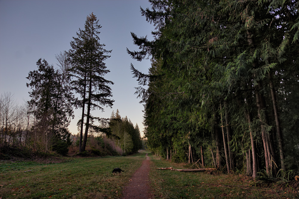 Trail-HDR_6223