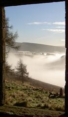 Picture Frame on Glen Dye (mike.thomson75) Tags: trees mist scotland aboyne cairnomount scotchmist