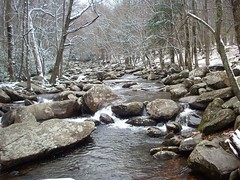 201_1538 (yellerhammer) Tags: winter snow mountains cold creek river smokey