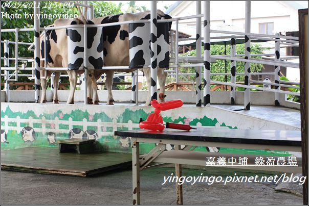 嘉義中埔_綠盈農場20110417_I6980