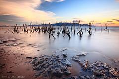 Teluk Air Tawar (Zhariff) Tags: sunset bw beach photography sand malaysia slowshutter penang 10stop zhariff