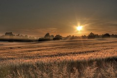 Sunrise (Old_Man_Mahoney) Tags: morning sun mist field sunrise canon golden early is high dynamic map dew fields 1855 mapping range tone hdr 60d