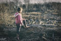 The Adventurer (JLDMphoto) Tags: nikon d7200 1685mm landscape andventure kansas driftwood trees nature winter