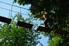 IMGP3344 (strongwater) Tags: dave jan bo velbert klettern witte klimmen svenja ilka luza strongwater waldkletterpark