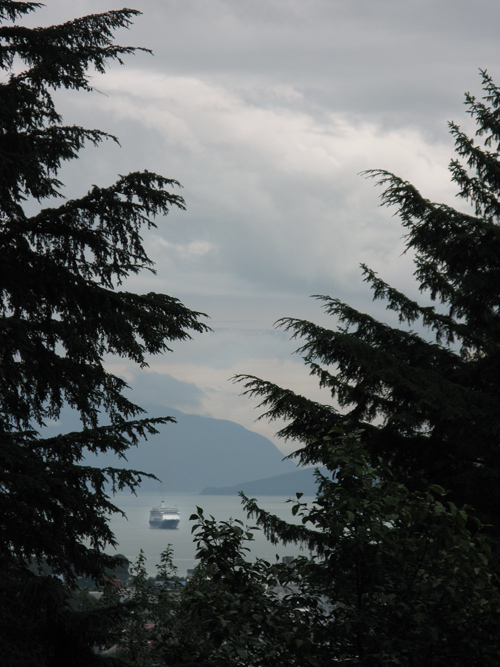 a cruise ship as seen through trees in Juneau, Alaska