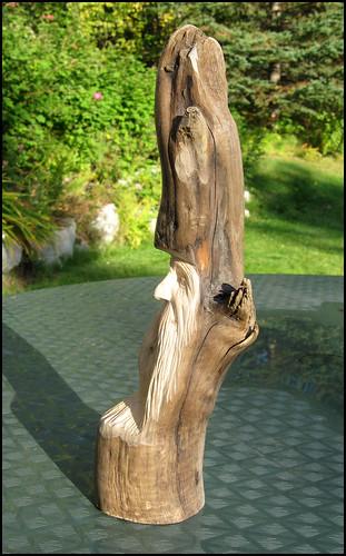 stumpy2