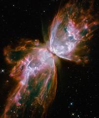 [フリー画像] [自然風景] [宇宙/スペース] [NGC 6302 バグ星雲/バタフライ星雲]        [フリー素材]