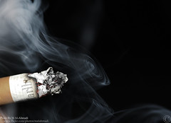 Disadvantages of Smoking (MJ ♛) Tags: black macro canon eos smoking marlboro efs efs60mm 40d disadvantages
