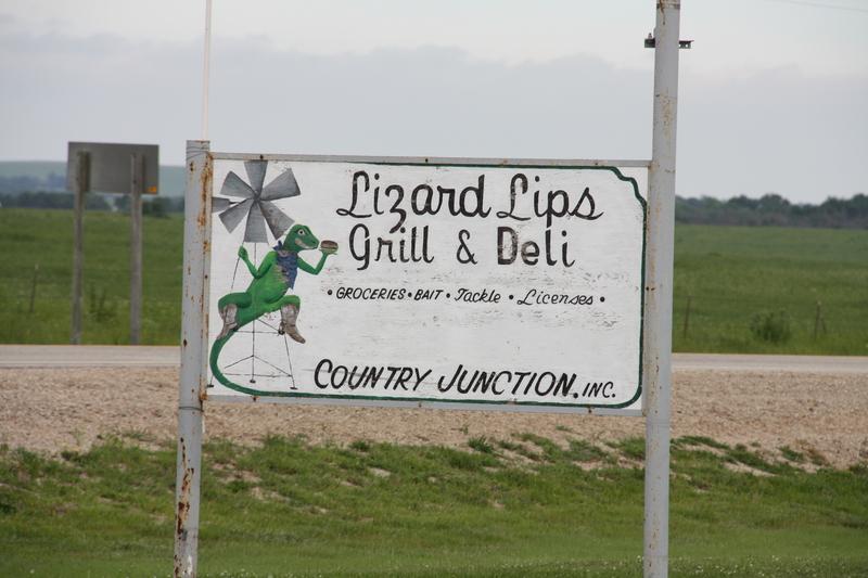 Lizard Lips