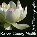 Karen Casey-Smith - Art That Captures You