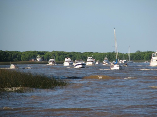 herd of boats