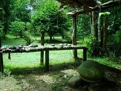 Cozinha indígena