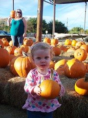 You have chosen..... wisely (Ludeman99) Tags: sammie eowynlouisebitner pumpkinpicking2009