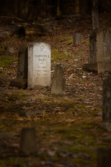 """In Flanders Fields..."" (Stuart Sipahigil) Tags: autumn nature cemetery nikon gravestone ww1 greatsmokymountainsnationalpark d700 indurotripod"