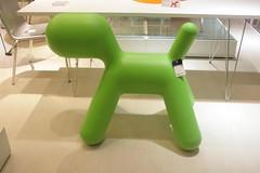 Magis Puppy (DL268) Tags: dog puppy magis dimensione
